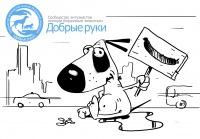 Помощь животным в Ростове-на-Дону