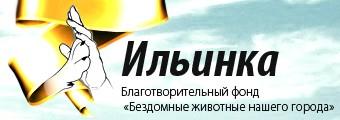 Приют Ильинка