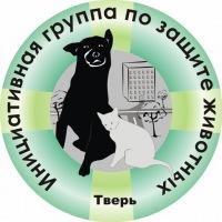 Помощь кошкам в Твери