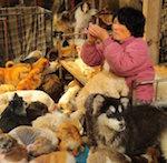 Спасение собак в Китае