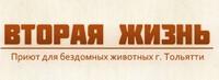 Приют в Тольятти