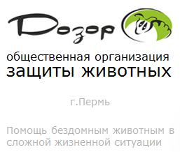 Защита животных в Перми