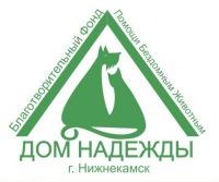 Помощь животным в Нижнекамске