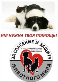 Помощь животным в Волгограде