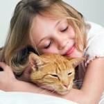 Как приобрести домашнее животное