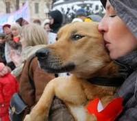 Митинг в защиту животных