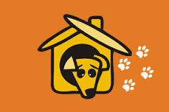 Помощь бездомным животным в Омске