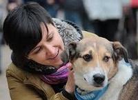 Помощь бездомным животным в Архангельске