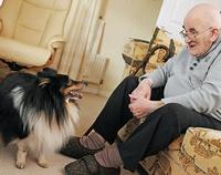 Собака для пожилого человека