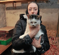 Кошки Задонского монастыря