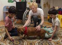 Канистерапия с бездомными животными