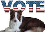 Собака президент США