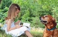 Помощь бездомным животным в Липецке