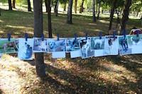Выставка беспородных собак в Сумах